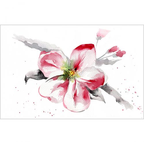 Blooming apple tree, watercolor