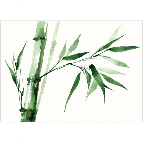 Green bamboo, watercolor on paper
