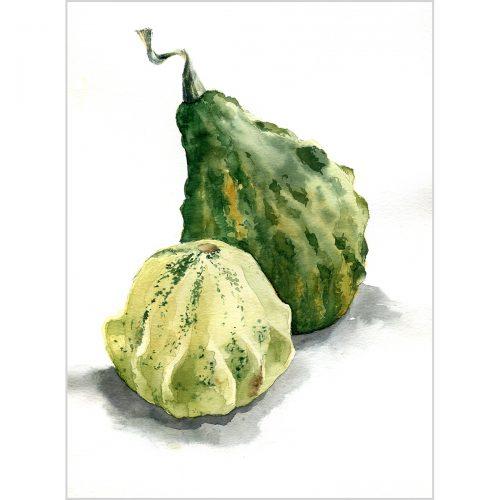 Light green and dark green pumpkins - riginal watercolor painting